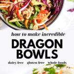 Healthy Dragon Bowls pin 2