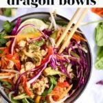 Healthy Dragon Bowls pin 1