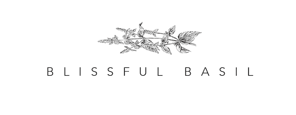 15+ Best Plant Based Blogs List - Blissful Basil