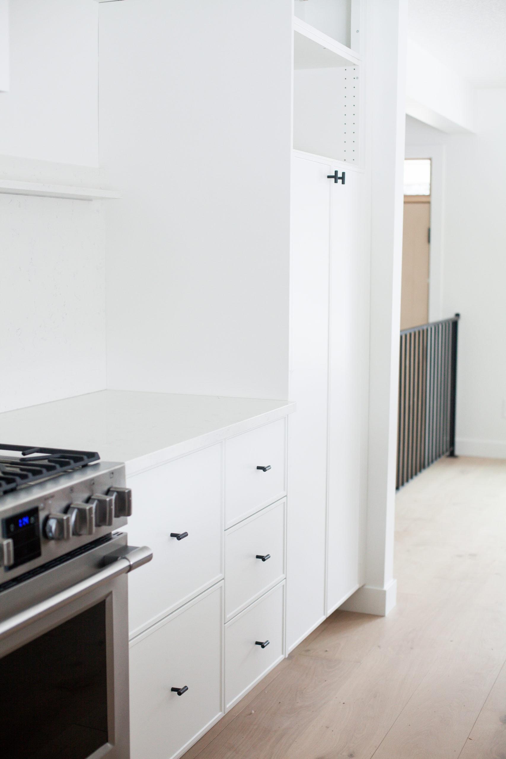 Full Home Renovation - Earthy Coastal Scandinavian California Minimal Kitchen Remodel