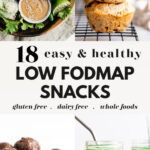 18 Delicious Low Fodmap Snacks Pin 2