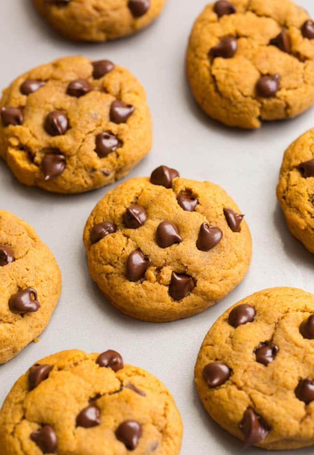 pumpkin chocolate chip cookies on a baking tray